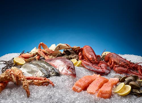 Hoshizaki Flaked Ice Seafood