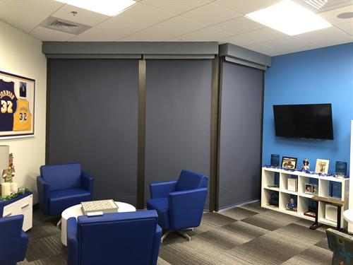 Blackout Motorized Roller Shades - Executive Office