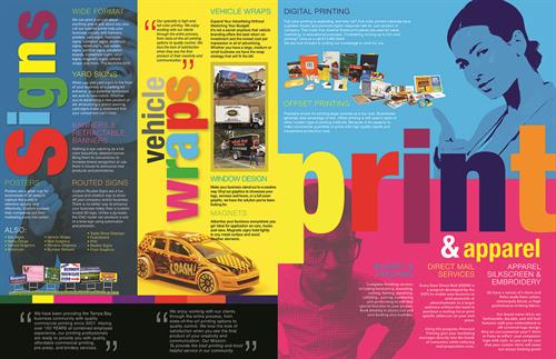 Full Color Brochure