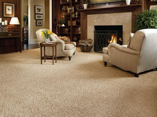 Gallery Image g_carpet3.jpg