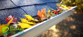Fascia damaging clogged gutters, no worries, we clean them out and take the debris with us.