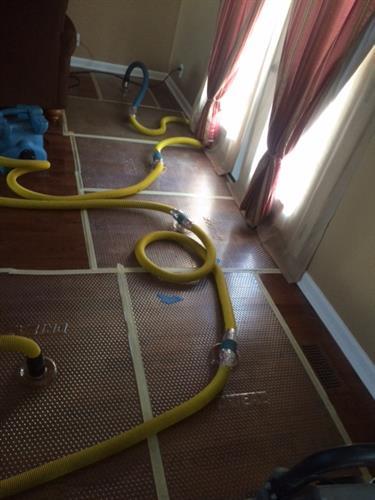 wood floor drying