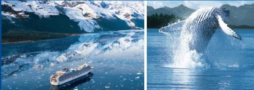 Gallery Image Glaciers_and_whales.JPG