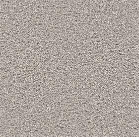 stock- silver birch carpet