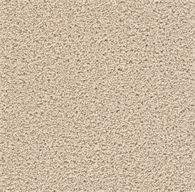 stock- eggshell carpet