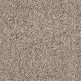 stock- plaster carpet