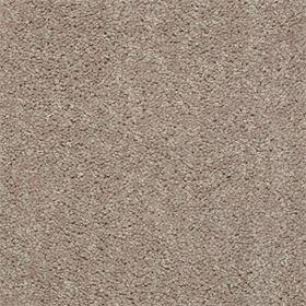 stock- plaster carpet
