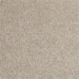 stock- antique silk carpet
