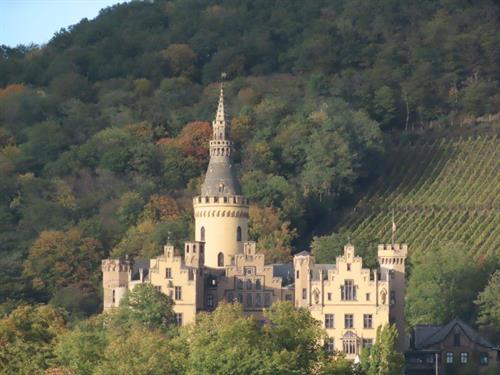 Palace on the Rhine