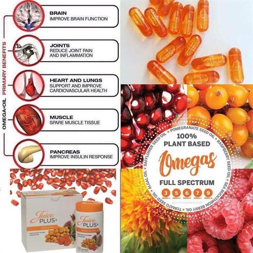 Vegan Omega Blend 3, 5, 6, 7, 9