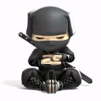 Mini Ninja Warriors - Warrenville Park District
