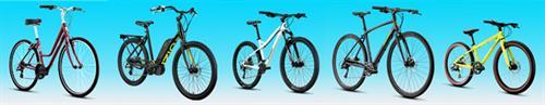 Gallery Image bikelineup.jpg