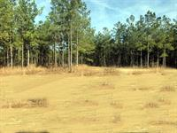 400 pristine acres