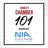 GEMCC's Chamber 101 presented by Network In Action