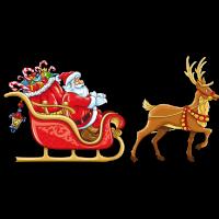 2020 57th Tarboro Christmas Parade