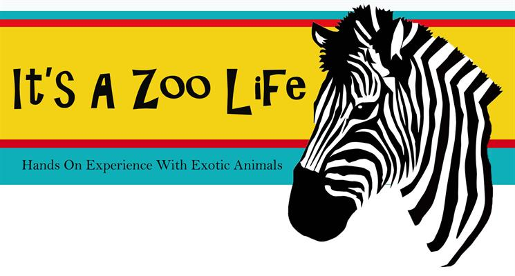 Its a Zoo Life