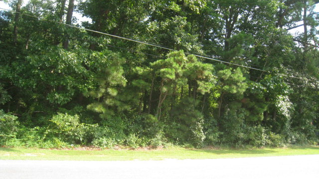 0 US Hwy 64 W Alternate, Tarboro, NC - Land - 0.78 Acres