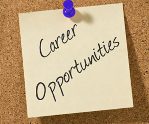 Gallery Image career-opportunities.jpg