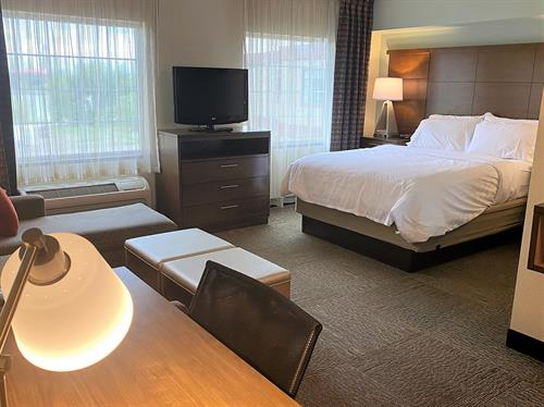 Standard Studio Suite with Queen Bed