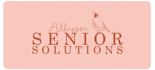 Allyson Senior Solutions