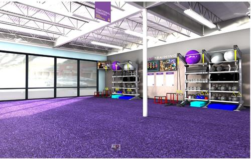 3D Purple turf Funtional training space