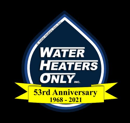 53rd Year Logo