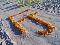 Rose petal initials in the sand for that special effect!