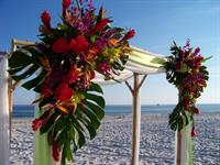 Exquisite fresh flowers on the arbor which can also be used for your reception.