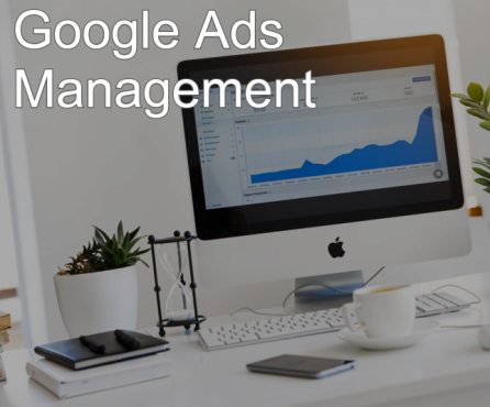 Gallery Image improve-google-adwords-campaign_(1).png