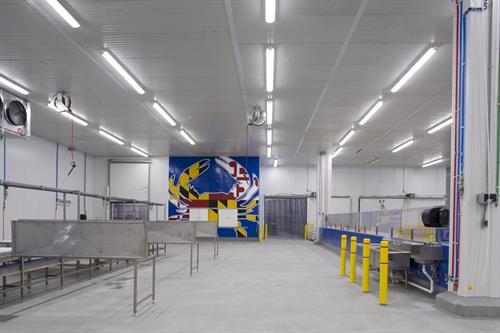 Gallery Image SF1_NAFCO_Interior_Warehouse_(13).jpg