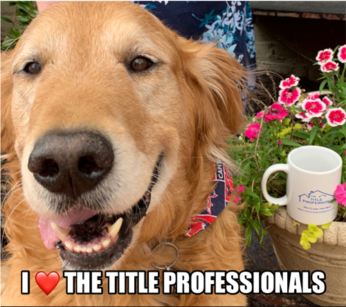 Jake, the official mascot of The Title Professionals