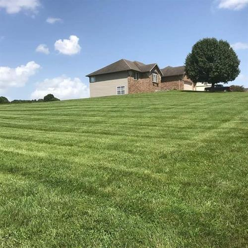 Rolling Hills in Ozark, Mo 65721