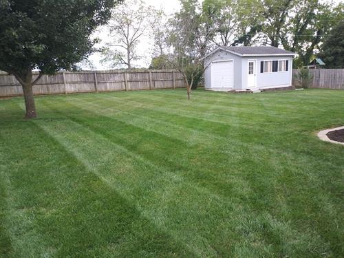 Lawn in Ozark, Mo 65721