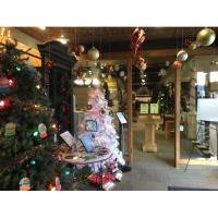 The 8th Annual Indoor Christmas Tree Walk