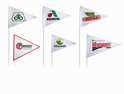 Customized Flags