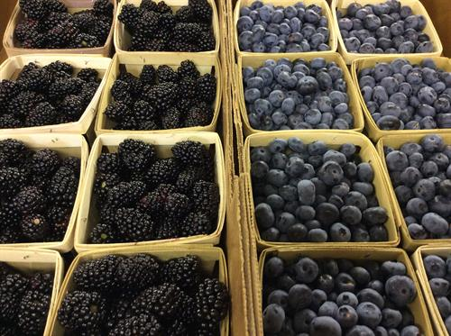 Gallery Image blueberries_blackberries-001.JPG