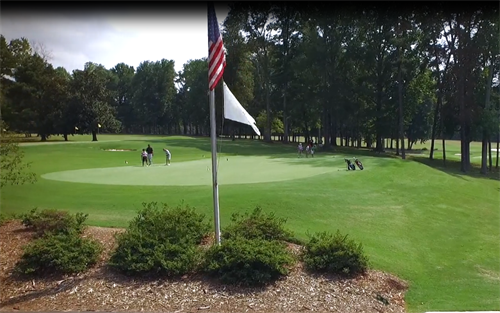 Gallery Image FLAG_GOLF.PNG