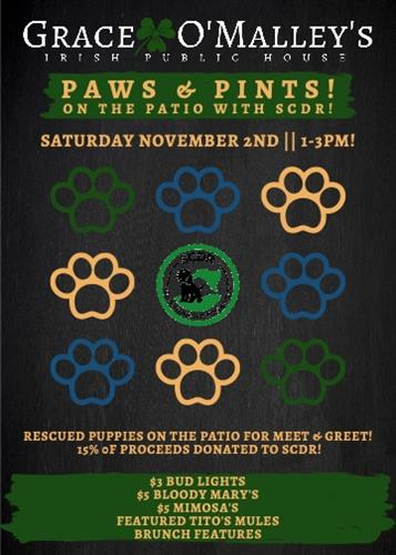 Pints for Pups Saturday, November 2nd 1:00 PM - 3:00 PM