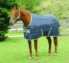 After horse blanket