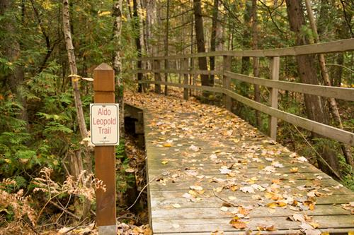 During your stay, step outside the cabin door to explore privately maintained Brickyard Creek trails covering over 70-acres of beautiful Boreal forest.
