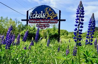 Eckels Pottery and Fine Craft Gallery