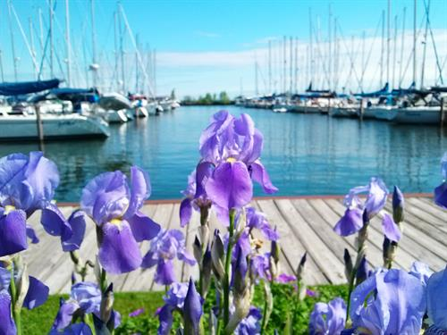 Come see us! We're located at the Port Superior Marina.