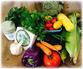 Bayfield Foods Cooperative