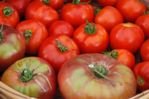 Beautiful tomatoes from Northcroft Farm in Ashland, WI.