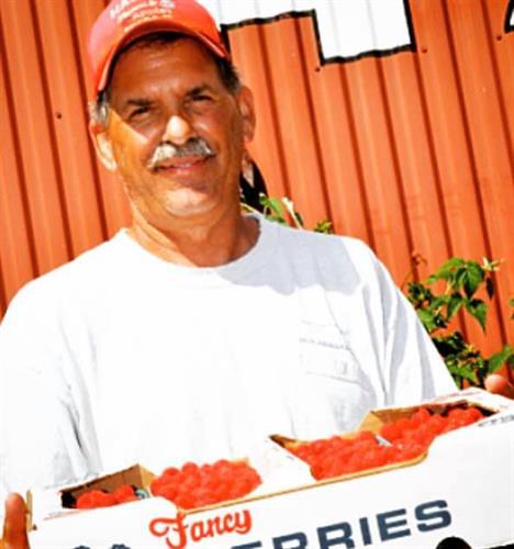 Jim Hauser of Hauser's Farm in Bayfield, WI has lots of delicious raspberries.