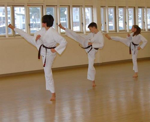 Aspire Martial Arts offers taekwondo training for ages 4-senior!