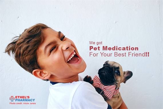 Pet Medication for your Furry Friend