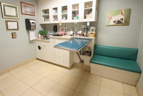 Coral Springs Animal Hospital Exam Room