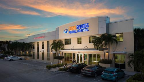 Coral Springs Animal Hospital at Dusk