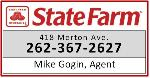 Mike Gogin - State Farm Insurance